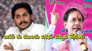 YS jagan wishes to KTR