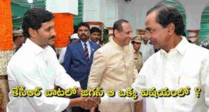 In the case of Jagan in KCR - YSRCP