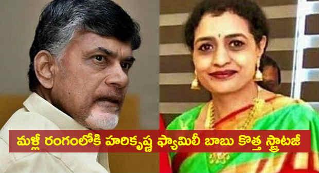 Harikrishna daughter suhasini huzoor jagan election campaign