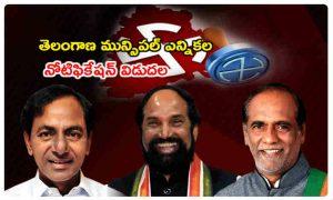 Muncipal-Elections