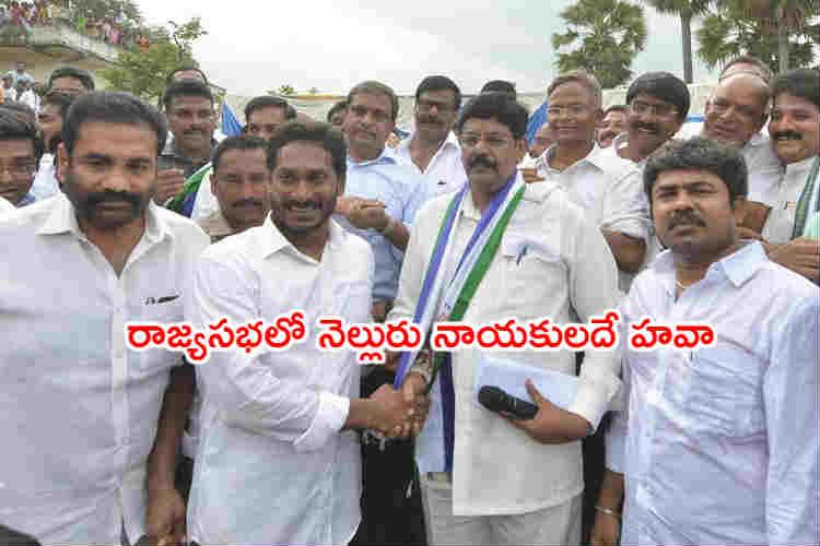 Nellore district YSRCP