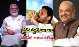 YSRCP and BJP Alliance