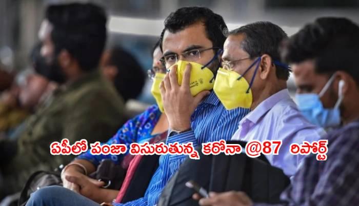 Andhra pradesh corona positive cases registered